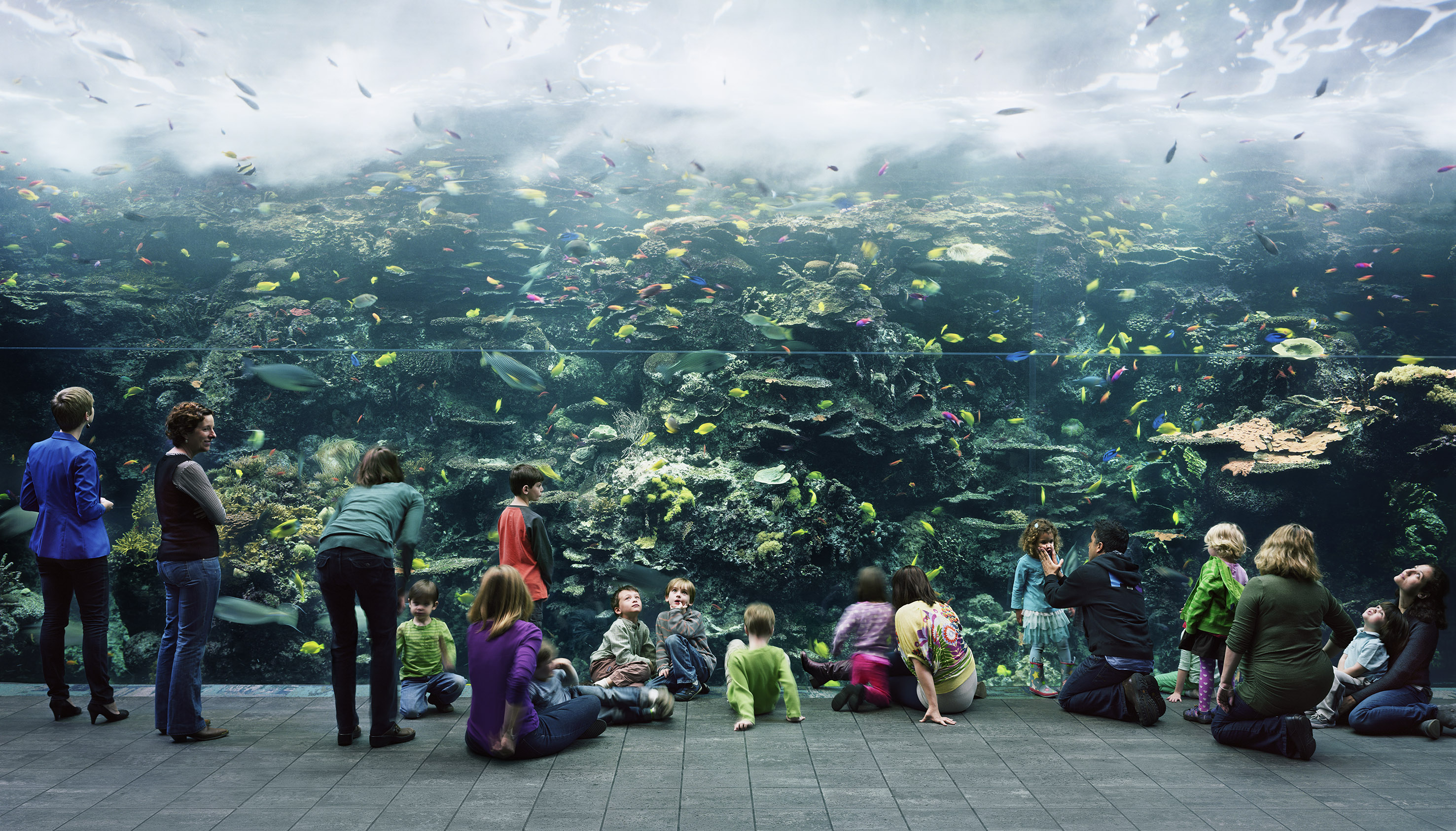 Acquarium, Atlanta 2013 © Thomas Struth