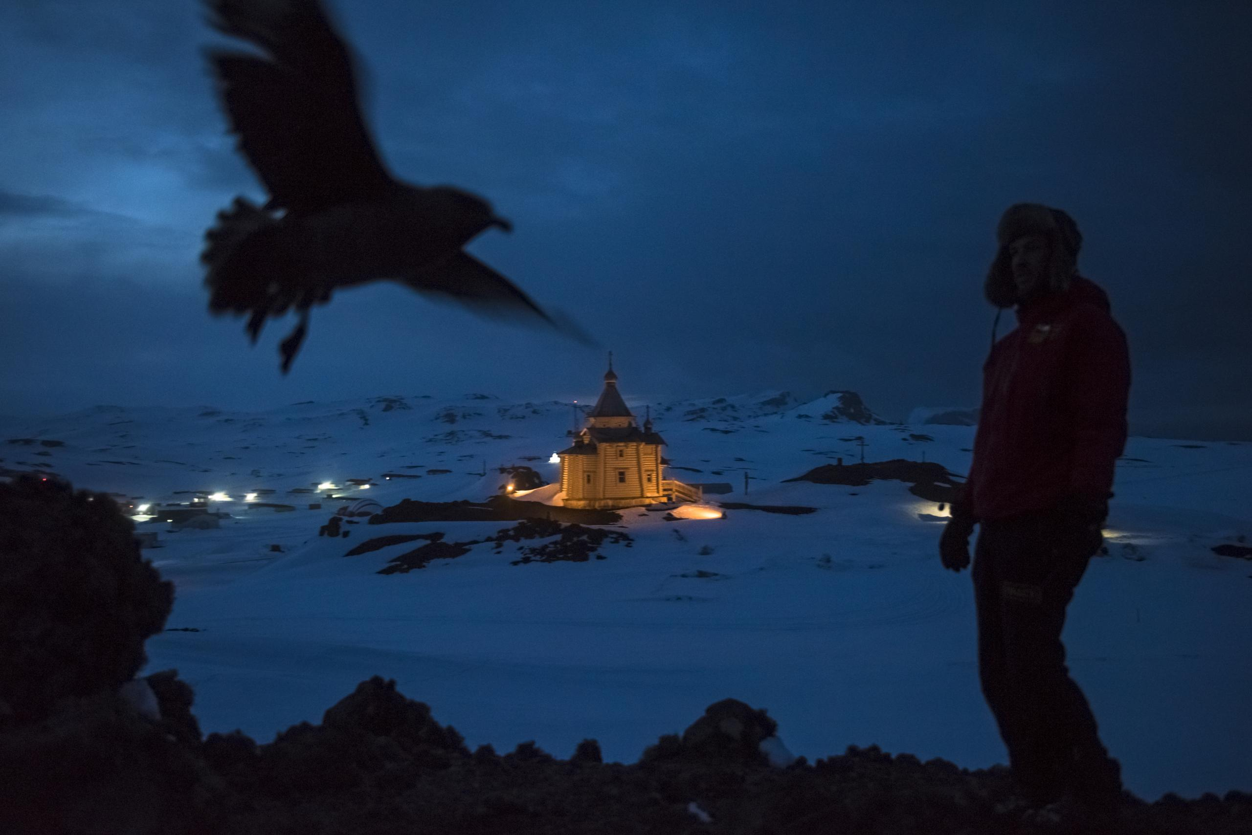 Dr. Ernesto Molina, who is supported by the Chilean Antarctic Institute, walks by the Bellingshausen Russian Antarctic base, with its Orthodox Church of the Holy Trinity, in Fildes Bay. A number of countries, including Chile, Poland and Russia, have set up scientific stations on King George Island in the Antarctic. By the Antarctic Treaty, which came into force in 1961, Antarctica was set aside as a scientific preserve, with freedom of investigation and free intellectual exchange. No country may exploit mineral resources or exert territorial claims. The treaty is currently in force until 2048, but a number of countries have an eye on asserting greater influence before the renewal date. Some are looking to the strategic and commercial possibilities that exist right now, such as iceberg harvesting (Antarctica is estimated to have the biggest reserves of fresh water on the planet), krill fishing, and expanding global navigation abilities. © Daniel Berehulak