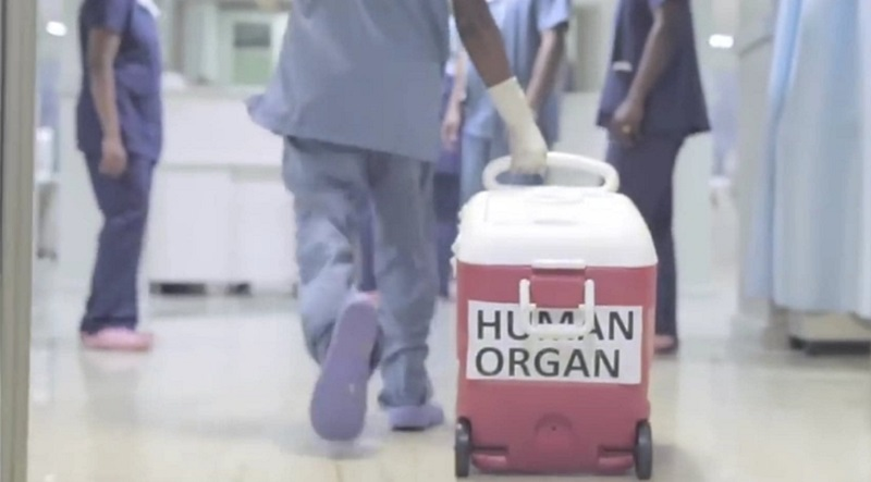 "© Youtube ""Organ Donation & Liver Transplantation"""
