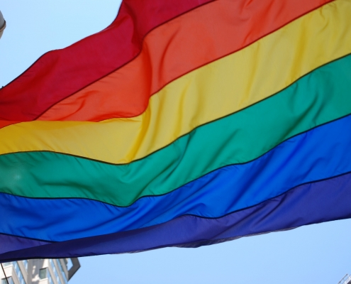 Rainbow flag, nancydowd, CC0